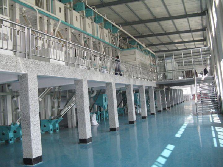 沈阳鑫禾日产100吨大米成套设备.jpg